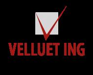 LOGO VELLUET ING 2016